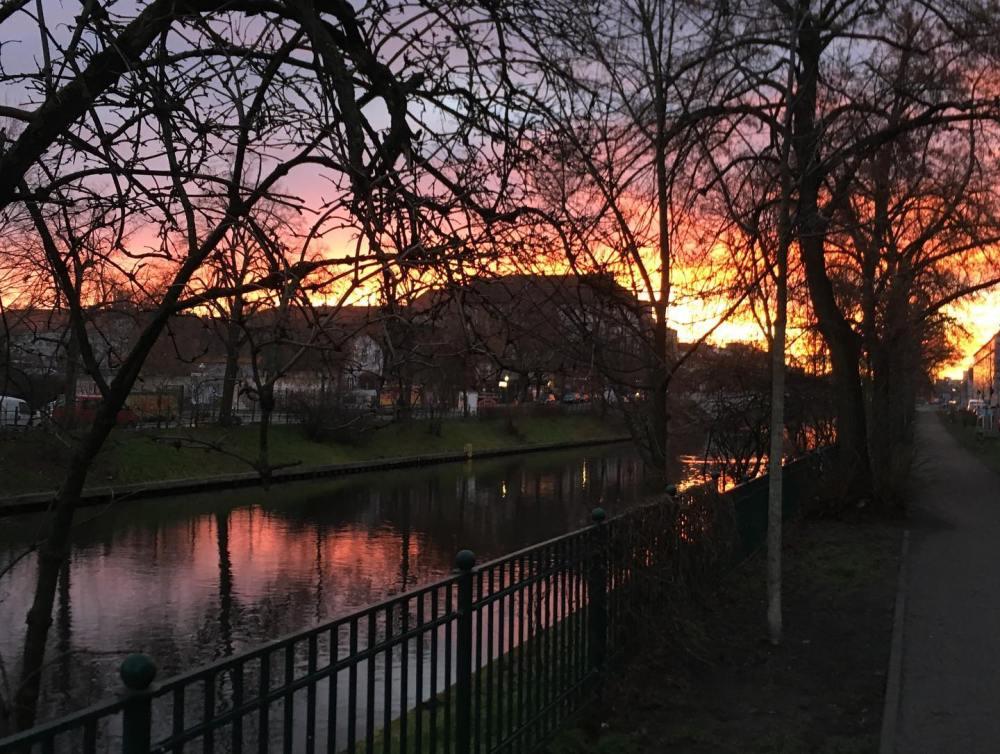 canal morning.jpg